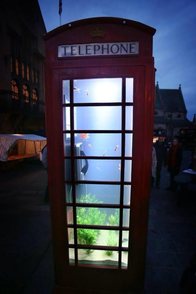 british-telephone-booth-as-fish-tank-aquarium