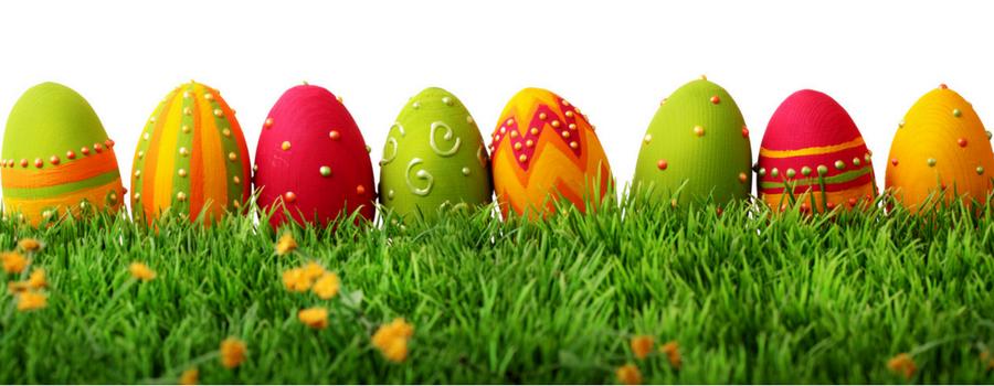Intense eggcitement at Church Farm April 14-17