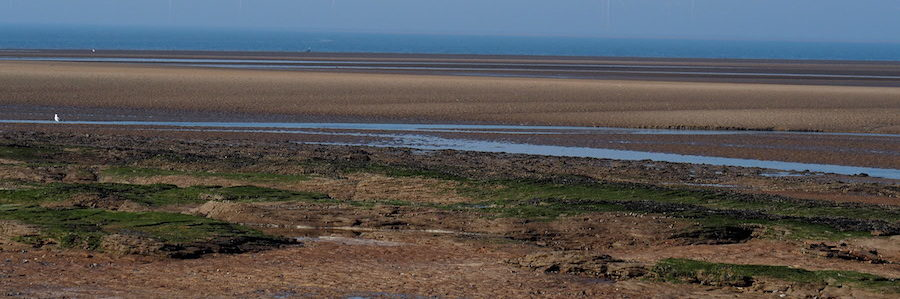 A guide to walking to Hilbre Island